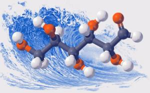 молекула хитозана